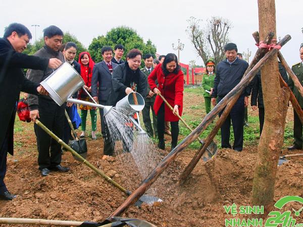 Trồng cây gây rừng - một biện pháp phòng chống ô nhiễm đất