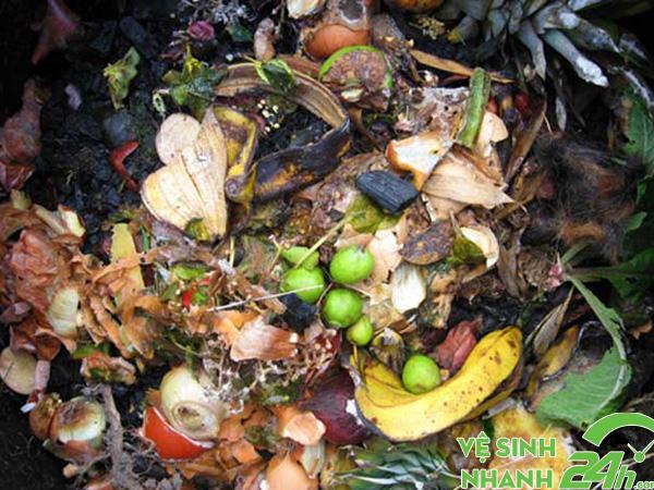 Rác hữu cơ là những loại rác dễ phân hủy